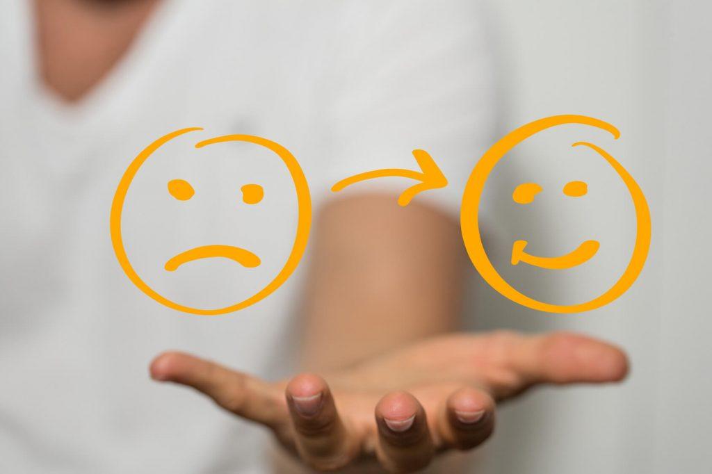 Las emociones: enemigas o aliadas